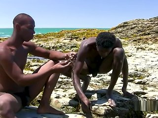 gay Savage and Majestic Vol 1 - In advance Careen black