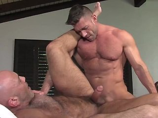 Rent - Titan Men gay