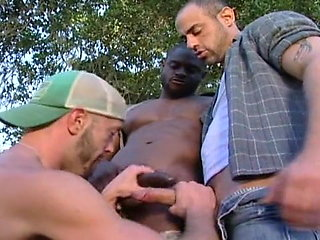 group sex (gay) black (gay)